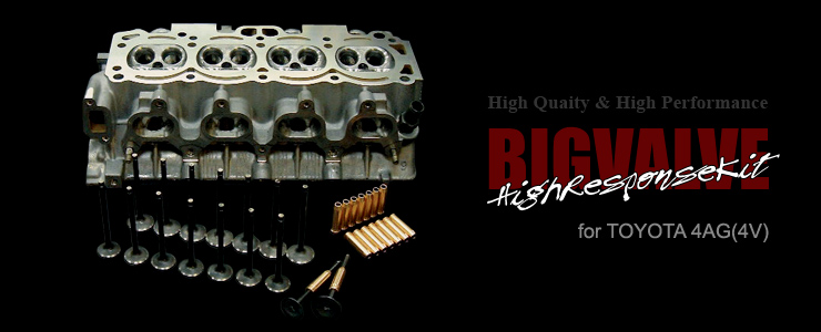 BIGVALVEHigh Response Kit for 4AG